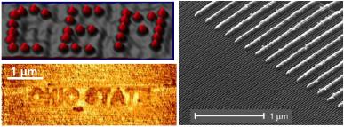 IRG-2D_Nano CEM and OSU