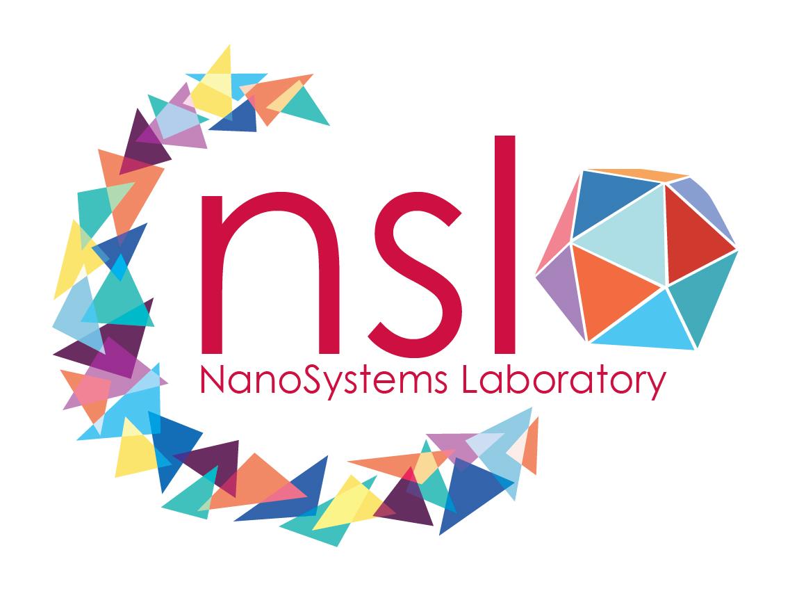 NSL Logo1_LQ_RGB-01